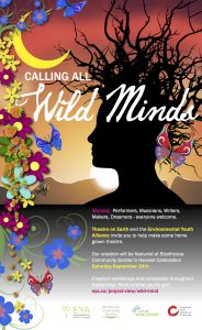 Wild Minds poster-theatre 2016
