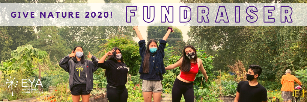 Give Nature 2020 Fundraiser Header